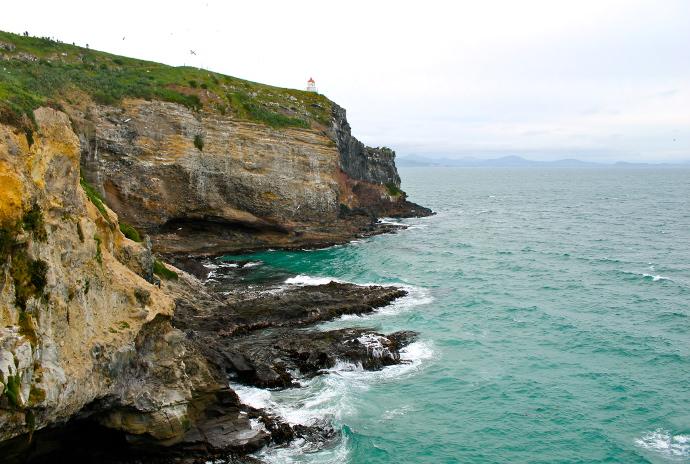 Peninsula Otago, isla sur, nueva zelanda