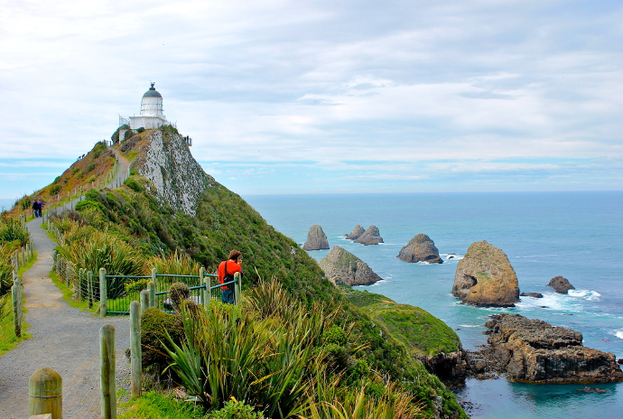 The Catlins Nugget Point, isla sur, nueva zelanda