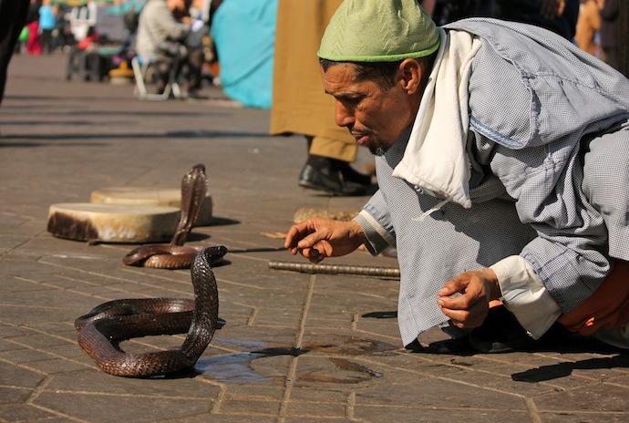 Marrakech, la ciudad Ocre